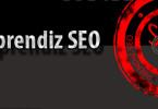 El Aprendiz SEO - SEO en Wordpress